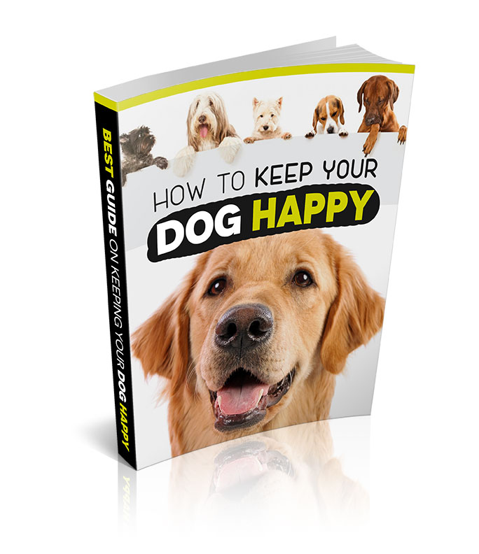 How to keep your dog happy ebook cover