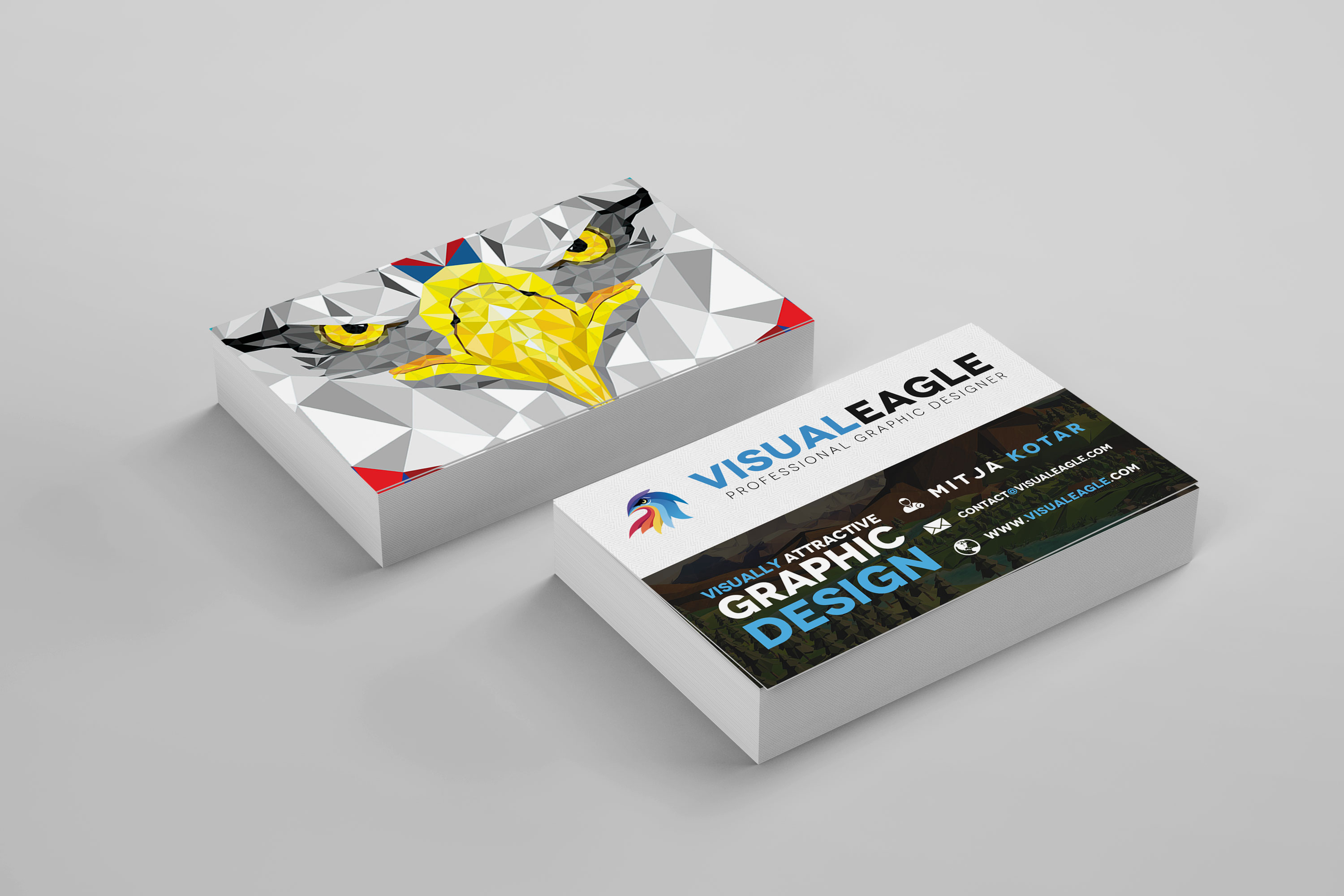 Visual Eagle Business Card Design
